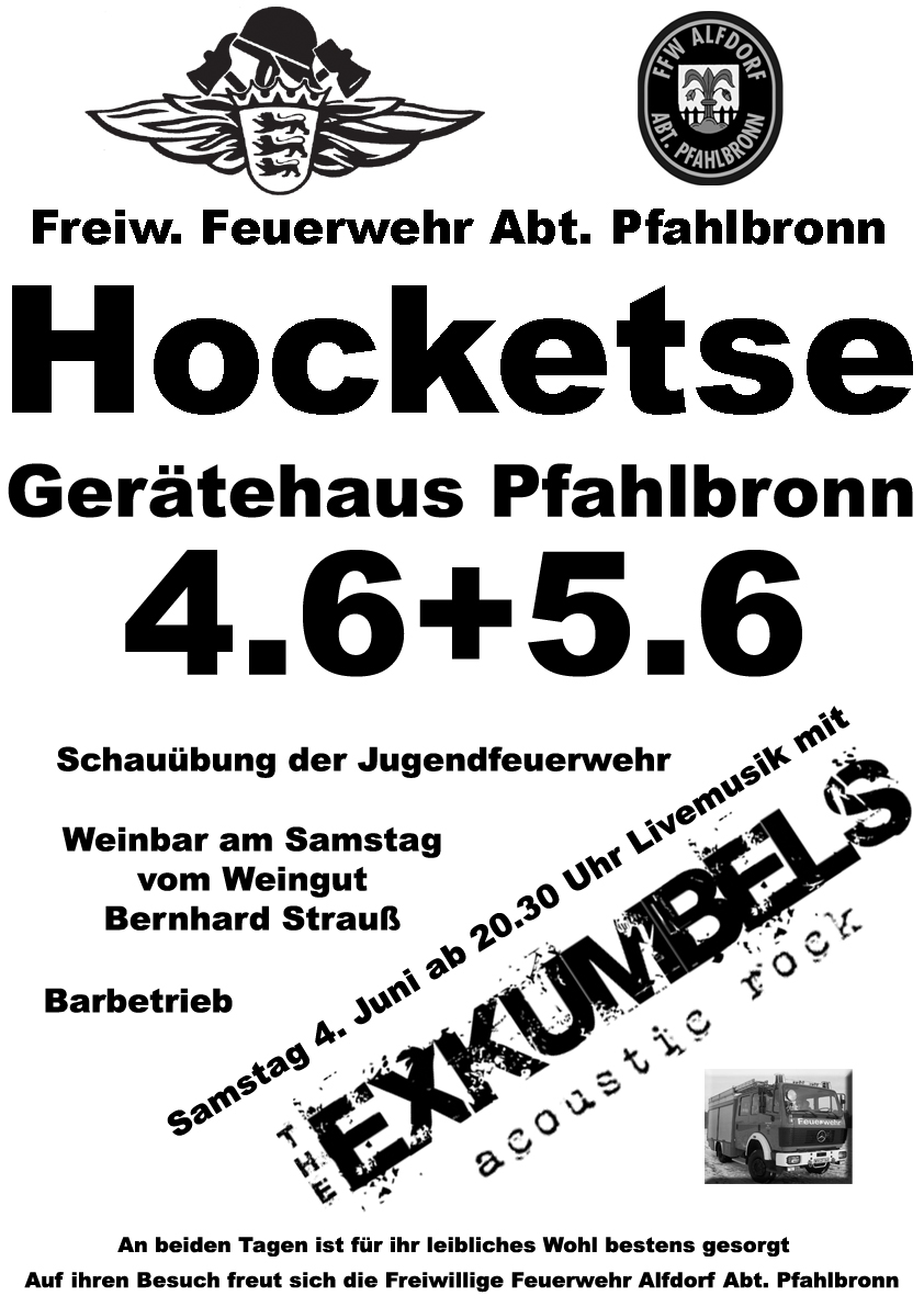 Hocketse_Pfahlbronn_2016